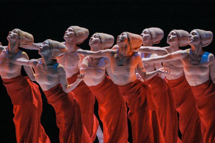 SHEN WEI DANCE ARTS