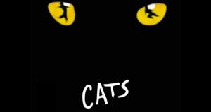 AUDIZIONI CATS