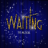 LA CDM (COMPAGNIA DEL MUSICAL CON GLI EX ALLIEVI SDM) PRESENTA WAITING, THE MUSICAL
